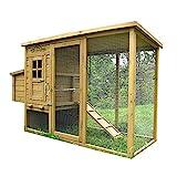 Pets Imperial - Hühnerstall Monmouth - für bis zu 4 Hühner - innovative Verriegelung mit Laufstall Auslauf und Legenest