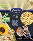 Lyra Pet® 25 kg Erdnusskerne SPLITS HK Südamerika Haut Erdnussbruch Erdnüsse Vogelfutter Wildvogelfutter Ganzjahresfutter Körner