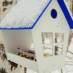Schönes Vogelhäuschen